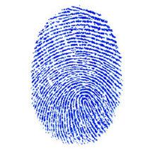 EU-Hof torpedeert Nederlandse wet vingerafdrukken | Nederlanders krijgen een elektronische identiteit | Scoop.it
