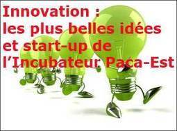 Nice : l'économie circulaire, véritable levier d'innovation | Sustainable business expert, waste & recycling, sales & marketing | Scoop.it