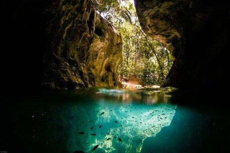 10 Of the Most Majestic Caves in Belize | De Natura Rerum | Scoop.it