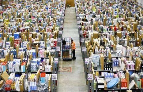 Francia aprueba una 'ley anti-Amazon' para la venta de libros electrónicos   Noticias y comentarios de actualidad sobre el libro electrónico. Documenta 48   Scoop.it