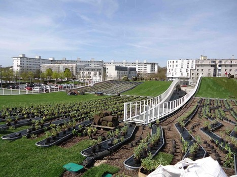 Bâtiment et urbanisme : de l'intérêt des plantes | Greenov - Bâtiment & énergie | Scoop.it