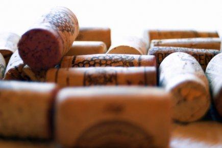 Un composé présent dans le vin rouge imiterait les bienfaits du sport   Planète Paléo   Scoop.it