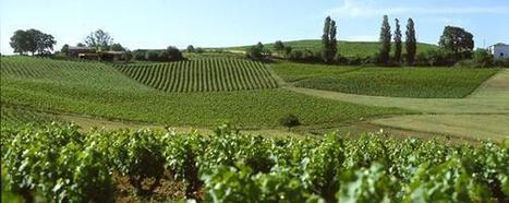 3 HOMMES DE GAILLAC | Vignerons de Terres de Gaillac | Scoop.it