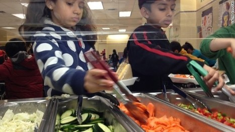 New York school goes all-vegetarian | HAPI Eating | Scoop.it