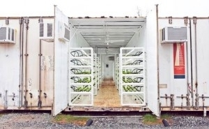 Urban Agriculture Redefined, Growing Crops In Recycled Shipping Containers - Forbes | The Barley Mow | Scoop.it