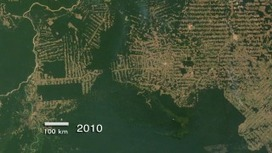 Goddard Multimedia Item 10872 - Amazon Deforestation in Rondonia, Brazil, 2000-2010 | Remote Sensing News | Scoop.it