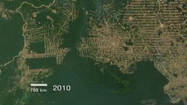 Goddard Multimedia Item 10872 - Amazon Deforestation in Rondonia, Brazil, 2000-2010 | Remote Sensing News | Scoop.it
