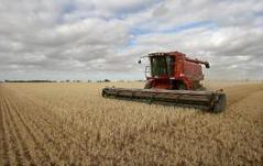 Closely-watched GM farm case begins in Australia | Food Ethics | Scoop.it