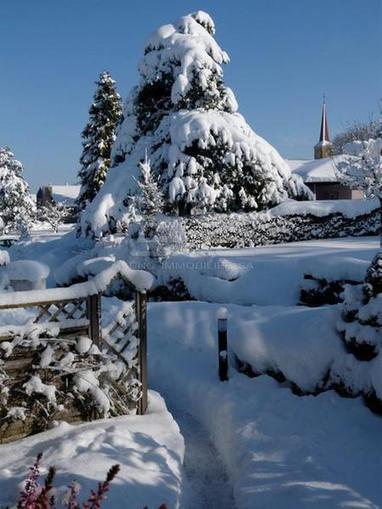 La montagne devrait toujours etre comme ça!   Immobilier Fribourg   Scoop.it