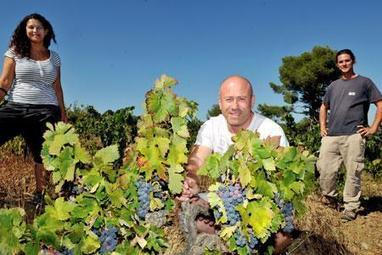 Les belles aventures de  Terra Hominis #Languedoc #vignerons #crowfounding | Verres de Contact | Scoop.it