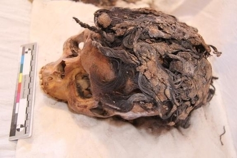 3300-Year-Old Skull Found With 70 Hair Extensions Still In Place - Design & Trend | AncientHistory@CHHS 2012-13 | Scoop.it