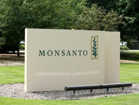 Monsanto to pay $80 million civil penalty for Roundup-related accounting violations : Business | Grain du Coteau : News ( corn maize ethanol DDG soybean soymeal wheat livestock beef pigs canadian dollar) | Scoop.it