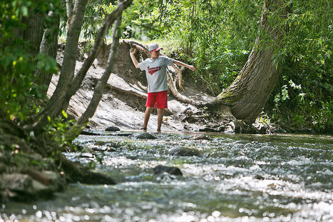 USGS report: Pesticides contaminate nation's streams | Sustain Our Earth | Scoop.it
