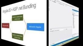 Definiendo datos de diseño con AngularJS y ASP.NET MVC ... | PROGRAMACION DE SISTEMAS | Scoop.it