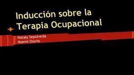 Terapia Ocupacional | Terapia Ocupacional en Comunidad - Nataly Sepúlveda Améstica | Scoop.it