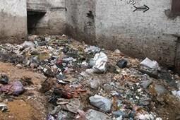 Pollution des sols | Projets SVT 3èmes Thème 8 : Pollution des sols et de l'eau et risques pour la santé | Scoop.it