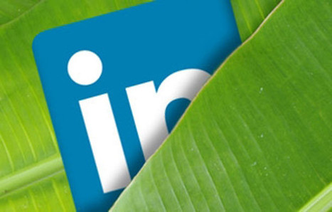 LinkedIn SEO: How to Increase the Visibility of Your Business Profile | curations | Scoop.it