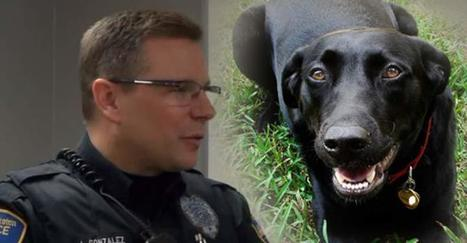 Cop Saves a Woman's Life After Choosing to Understand a Dog Instead of Shooting It | Community Village Daily | Scoop.it