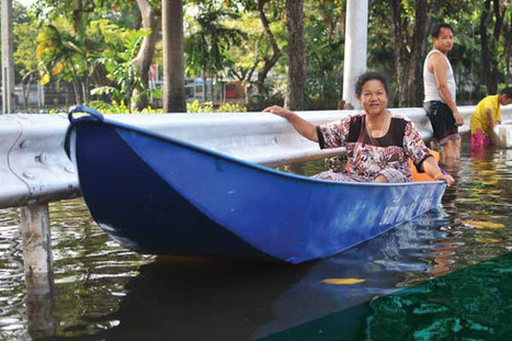 Amplifying women's voices in climate change solutions focus of UN conference - UN News Centre   Climate Finance   Scoop.it