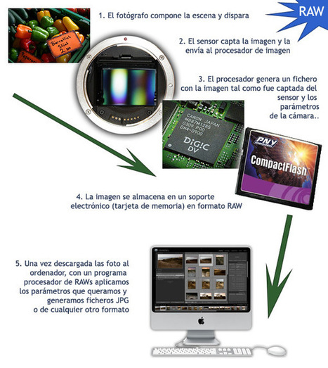 El Blog de Educación Plástica y Visual: UD. 5. LA REPRESENTACIÓN BIDIMENSIONAL CON LA TÉCNICA. FOTOGRAFÍA E IMAGEN TECNOLÓGICA. | Taller Básico Bidimensional y Tridimensional | Scoop.it