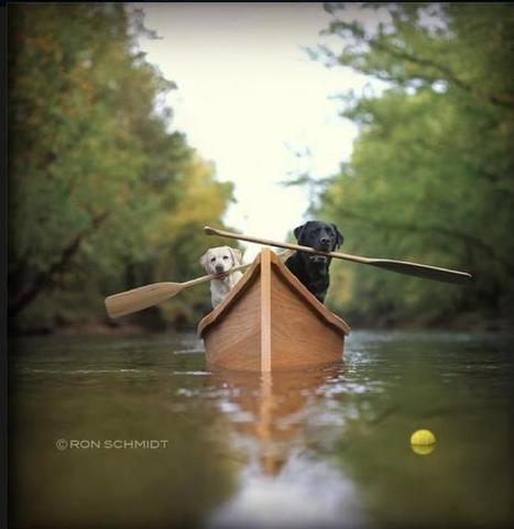 Wall Photos | Facebook | Canoeing & Kayaking | Scoop.it