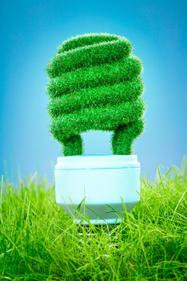 2015/03/27> BE Espagne146> Des bactéries et des algues bioluminescentes pour l'éclairage et la signalisation | Algues et énergies | Scoop.it