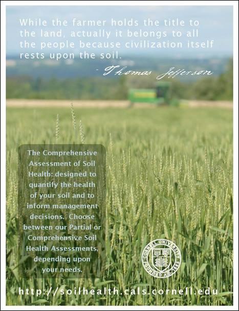 L'évaluation globale de la santé des sols Cornell Soil Health Laboratory, Ithaca | MOF Matière Organique Fugace réactive du sol | Scoop.it