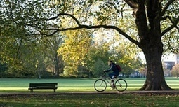 Parks are good for us – so why are they being neglected? | Patrick Barkham | Gardening | Scoop.it