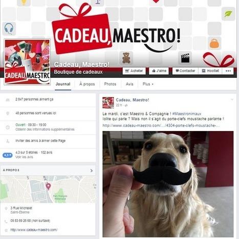Community Manager : Nicolas Graillon de Cadeau Maestro | Formation Réseaux Sociaux | Scoop.it