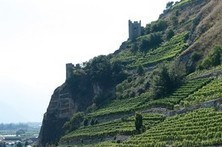 Cheese, watches, chocolate, Federer...but Switzerland should be known for wine   Wines and Terroirs   Scoop.it