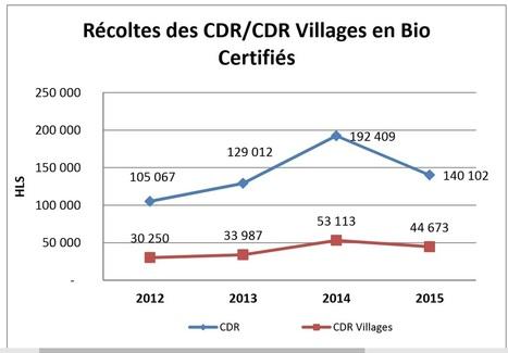Vallée du Rhône : le vignoble Bio recule en 2015 et la tendance devrait se poursuivre | Latests news in Wine Fermentation | Scoop.it