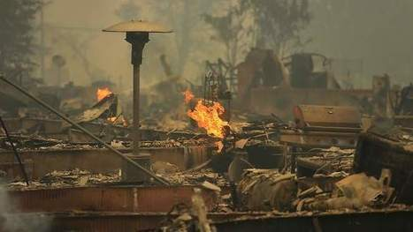 PD Editorial: Valley fire's staggering toll is still | The Press Democrat | History of Social and Political Advances | Scoop.it