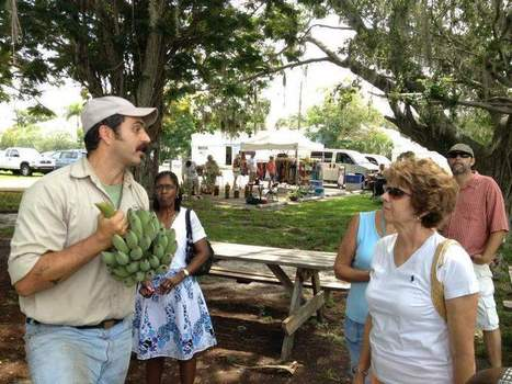 Fruit trees a hot topic with urban farmers | sustainability topics | Scoop.it