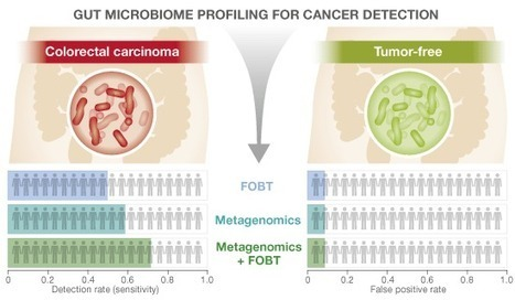 Potential of fecal microbiota for early-stage detection of colorectal cancer - Zeller - 2014 - Molecular Systems Biology - Wiley Online Library | Systems biology and bioinformatics | Scoop.it