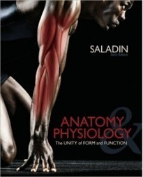 Test Bank For » Test Bank for Anatomy & Physiology, 6th Edition: Kenneth Saladin Download | Anatomy & Physiology Test Bank | Scoop.it
