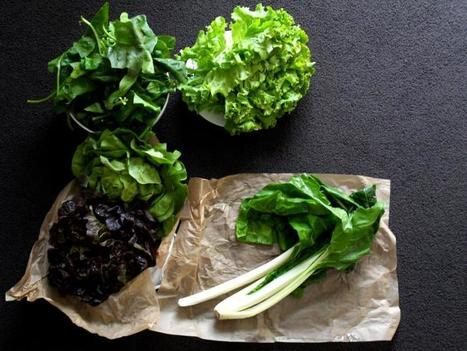 Green Leafy Veggies May Protect Your Eyesight | Vegetarian and Vegan | Scoop.it
