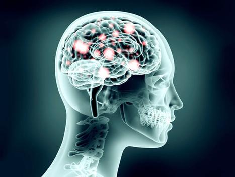 Creation of neuroscience research hub : McGill Reporter | Brain Training | Scoop.it