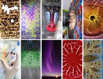 CNRS : Les photothèque et vidéothèque en ligne font peau neuve | TICE, Web 2.0, logiciels libres | Scoop.it