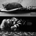 Photo : Friendship Between a Girl and Her Cat | photo graphisme design | Scoop.it