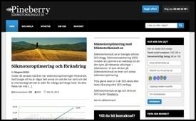 19 svenska sajter om sökmotoroptimering | Bloggsnappat | Scoop.it