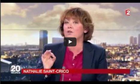 Journaliste de France 2 ou éditorialiste du Figaro ? Nathalie Saint-Cricq face à la CGT   Econopoli   Scoop.it