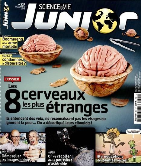 Science & vie junior n°327 - Décembre 2016   Les revues du CDI - Collège Marc Chagall   Scoop.it