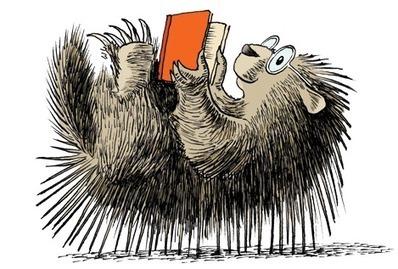 Summer Reading in New York | Summer Reading Programs | Scoop.it
