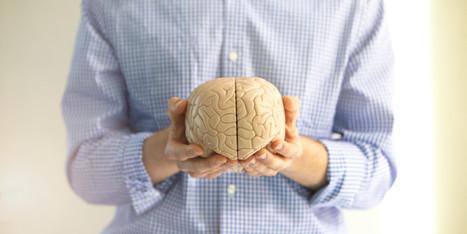 Le Coaching vu du cerveau - Le Huffington Post | ML Coaching | Scoop.it