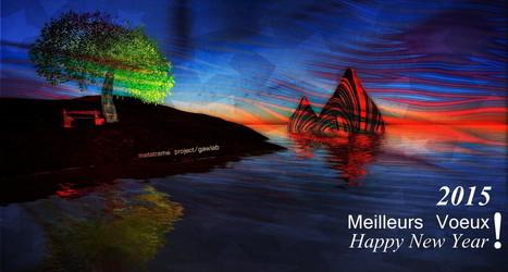 Happy 2015 !   Metatrame   Scoop.it