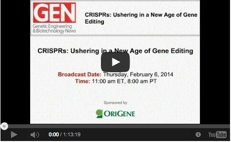 CRISPR-CAS Webinar Video Lecture - by Drs. Barrangon, Zhang and Church | Science-Videos | Scoop.it