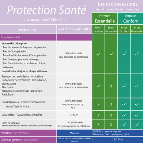 Assurance santé chats   Protection Santé   Protection Santé   Scoop.it