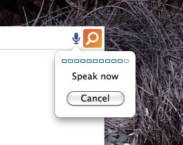 The Speak-To-Search Extension ForChrome | Internet Consumer behaviors | Scoop.it
