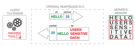 Within the Heartbleed Bug | Computer Technology-Hardware, Software, Data Recovery | Scoop.it