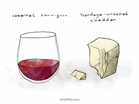 Wine and Cheese Pairing Ideas   Wine Folly   Wine n Beer Fun & Facts   Scoop.it